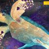 Sea Turtle Original Acrylic Painting by Ginny Abblett SOLD